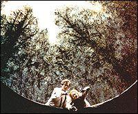 Сцена из постановки 1988 года в Вене